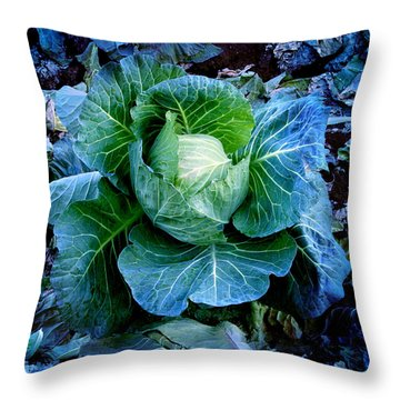 Flower Throw Pillow by Julian Cook