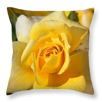 Flower-yellow Rose-delight Throw Pillow by Joy Watson