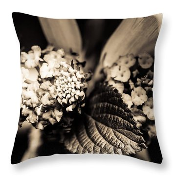 Flowers In A Jar Throw Pillow by Marco Oliveira