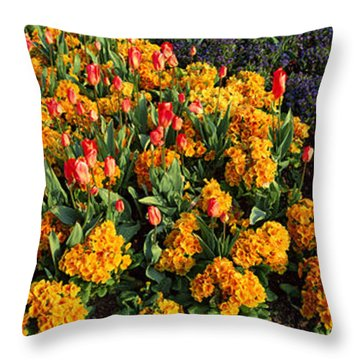 Flowers In Hyde Park, City Throw Pillow by Panoramic Images