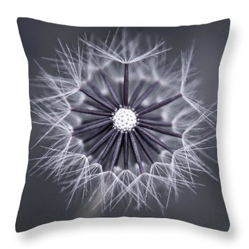 Fluffy Sun - S99b Throw Pillow by Variance Collections