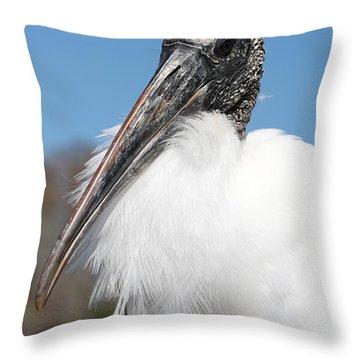 Fluffy Wood Stork Throw Pillow by Carol Groenen