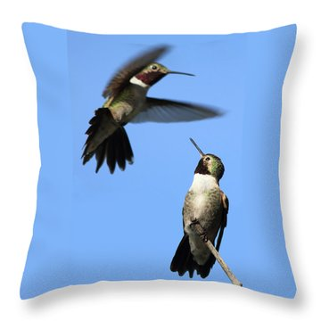 Fluttering Throw Pillow by Shane Bechler