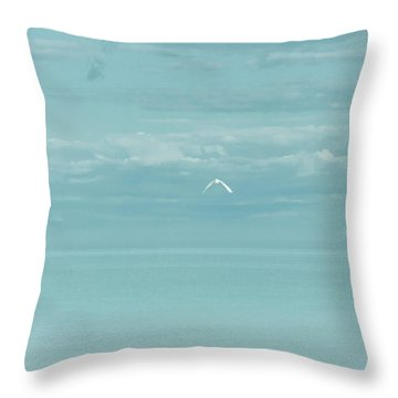 Fly Away Throw Pillow by Kim Hojnacki