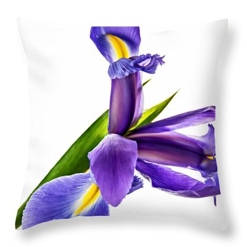 Flying Purple People Pleaser Throw Pillow by Steve Harrington
