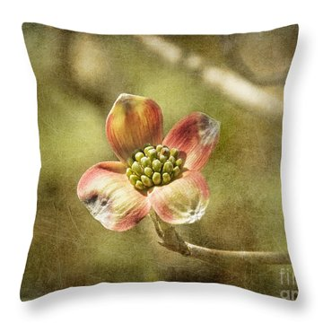 Focus On Dogwood Throw Pillow by Terry Rowe