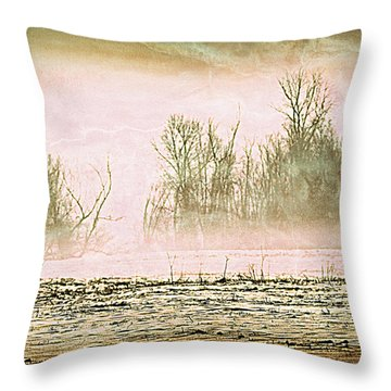 Fog Abstract 1 Throw Pillow by Marty Koch