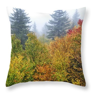 Fog Fall Day Throw Pillow by Thomas R Fletcher