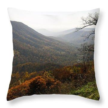Foggy Fall Morning Throw Pillow by Lynn Bauer