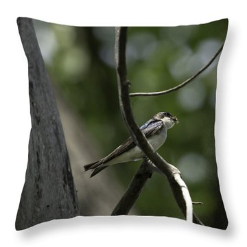 Food For The Young Throw Pillow by Thomas Young