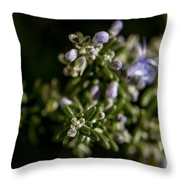 For Remembrance Throw Pillow by Caitlyn  Grasso