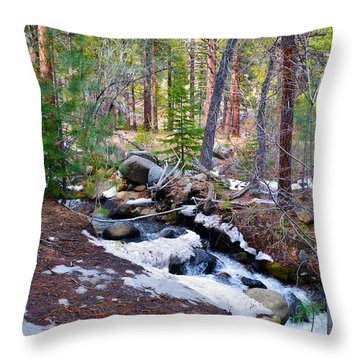 Forest Creek 4 Throw Pillow by Brent Dolliver