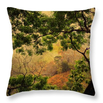 Framing Tree Branches Throw Pillow by Jenny Rainbow