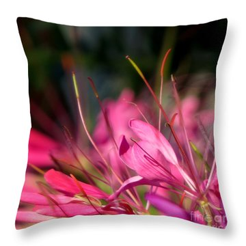 Free Spirit Cleome Throw Pillow by France Laliberte