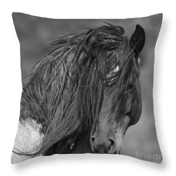 Freedom Close Up Throw Pillow by Carol Walker