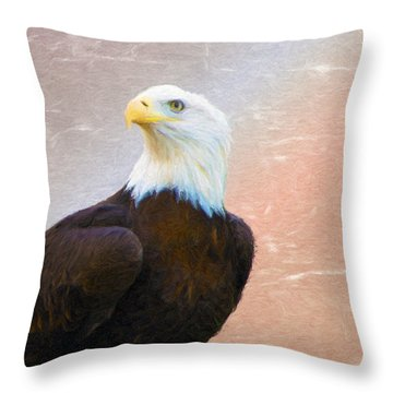 Freedom Flyer Throw Pillow by Jeff Kolker
