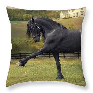 Friesian Stallion Tije Spanish Walk Throw Pillow by Fran J Scott