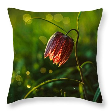 Fritillaria Meleagris Throw Pillow by Davorin Mance