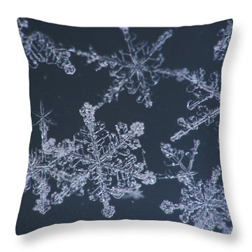 Frost Crystal On Glass Kodiak Isl Throw Pillow by Marion Owen