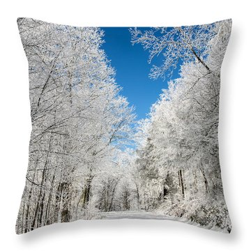 Frosted Winter Throw Pillow by John Haldane
