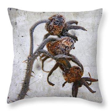 Frozen Throw Pillow by Bernard Jaubert
