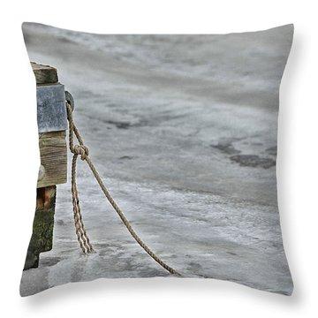 Frozen Throw Pillow by Karol Livote