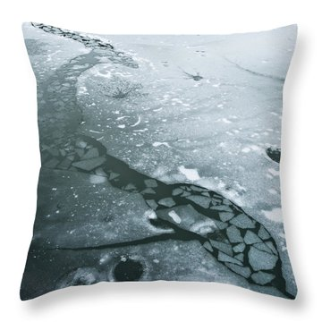 Frozen Pond Throw Pillow by Gary Eason