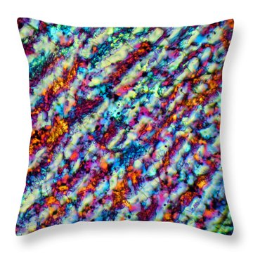 Frozen Rivers Throw Pillow by Tom Phillips