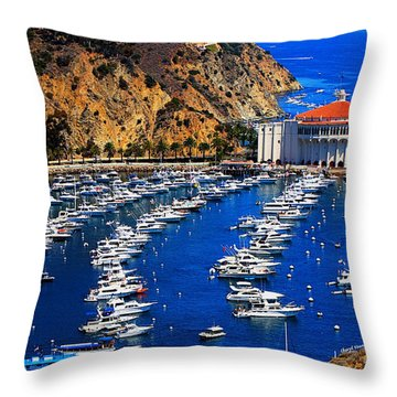 Full Bay Throw Pillow by Cheryl Young