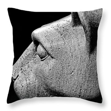 Garatti's Lion Throw Pillow by Tom Gari Gallery-Three-Photography