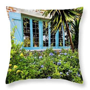 Garden Window Db Throw Pillow by Rich Franco