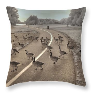 Geese Crossing Throw Pillow by Jane Linders