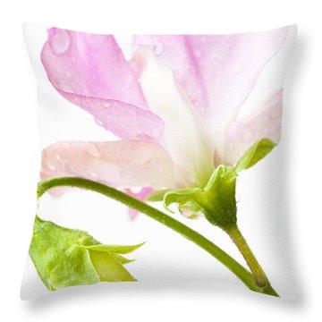 Geranium Pink Throw Pillow by Anne Gilbert