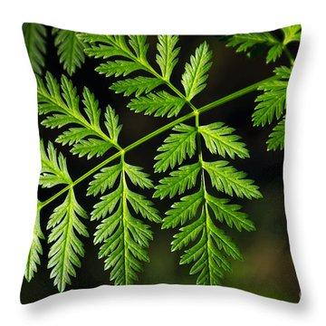 Gereric Vegetation Throw Pillow by Carlos Caetano