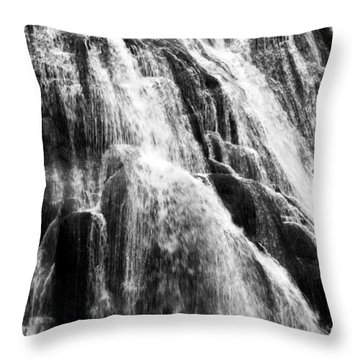 Gibbon Falls Throw Pillow by Bill Gallagher
