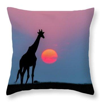 Giraffe At Sunset Chobe Np Botswana Throw Pillow by Andrew Schoeman