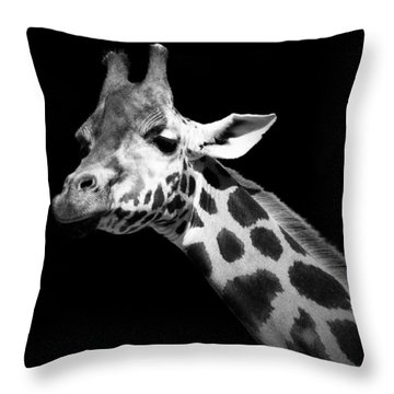 Portrait Of Giraffe In Black And White Throw Pillow by Lukas Holas