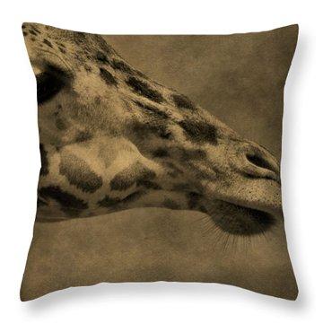 Giraffe Portait Throw Pillow by Dan Sproul