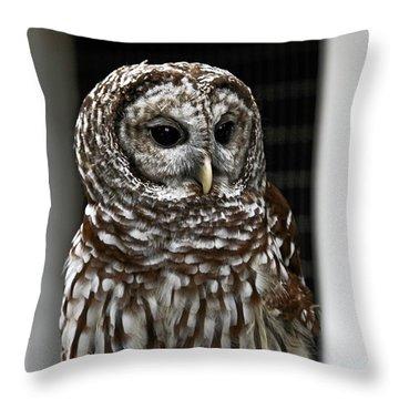 Give A Hoot Throw Pillow by John Haldane