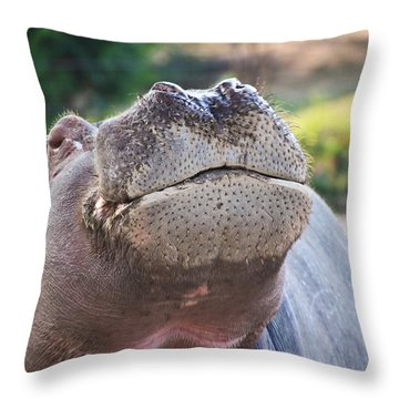 Give Me A Kiss Hippo Throw Pillow by Eti Reid