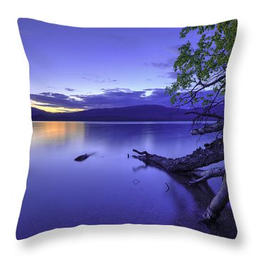 Glacier Blue Throw Pillow by Chad Dutson