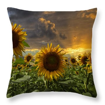 Glory Throw Pillow by Debra and Dave Vanderlaan