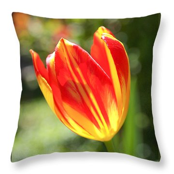 Glowing Tulip Throw Pillow by Rona Black