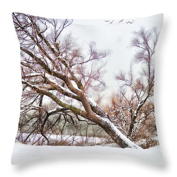 Going Softly Into Winter Throw Pillow by Betty LaRue