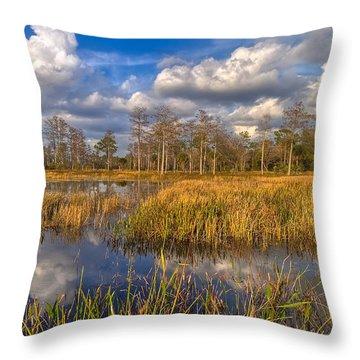 Golden Grasses Throw Pillow by Debra and Dave Vanderlaan