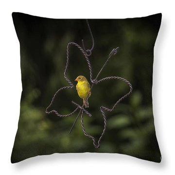 Golden Hour Part 2 Throw Pillow by Cris Hayes