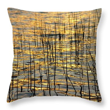 Golden Lake Ripples Throw Pillow by James BO  Insogna