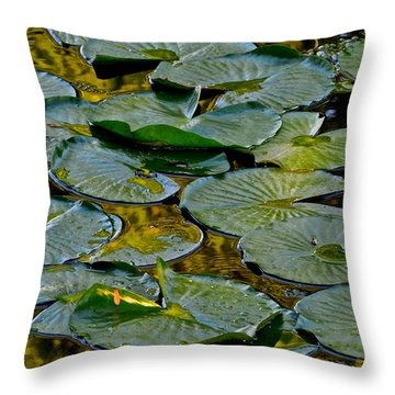 Golden Lilly Pads Throw Pillow by Frozen in Time Fine Art Photography