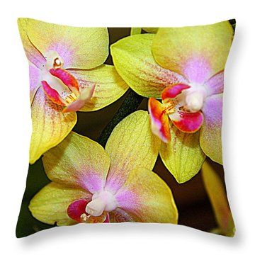 Golden Orchids Throw Pillow by Dora Sofia Caputo Photographic Art and Design