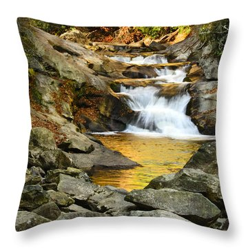 Golden Pond Throw Pillow by Penny Lisowski